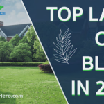 Top Lawn Care Blogs in 2022